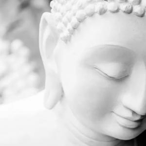 Ces célébrités qui pratiquent le bouddhisme